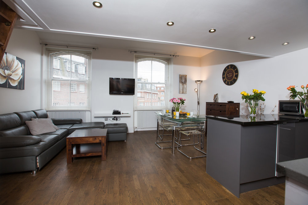 1 Bedroom Apartment - Living Area.jpg