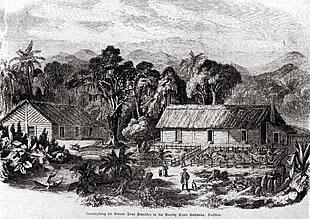 """Primeira vista de Joinville, antes da fundação - desenho de 1850 Xilogravura publicada na """"Illustrierte Zeitung"""" de 1851"""