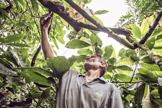 Ernst Götsch, em sua fazenda, perto de Piraí do Norte, Bahia / Imagem por Nelson Mello Site Trip Transformadores