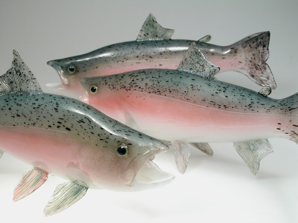 MarcPetrovictrout.jpg