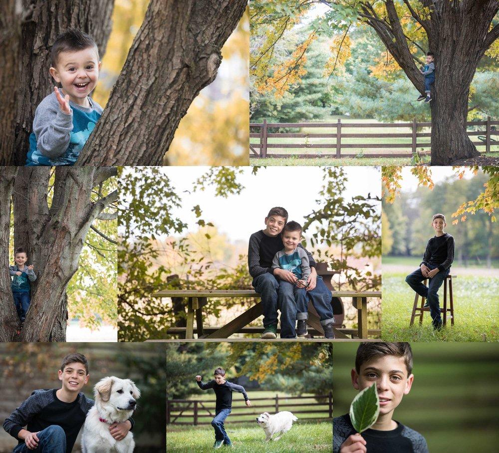 Fall Collage 1.jpg