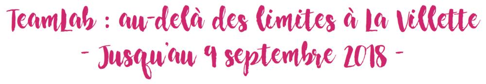 TeamLab : au-delà des limitesà La Villette - Cultur'club
