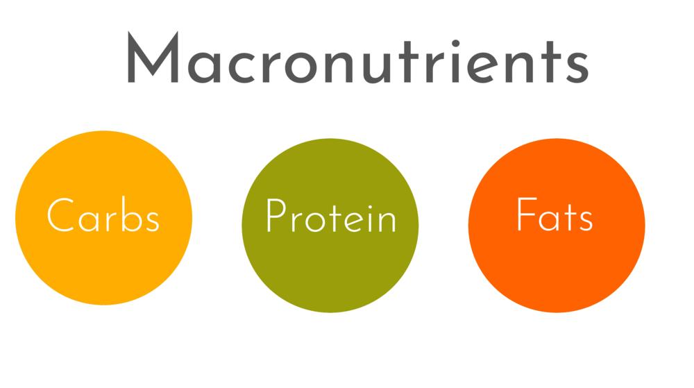 macronutrients.png