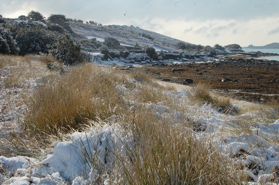 Snow on the beach - lots of happy memories from last winter