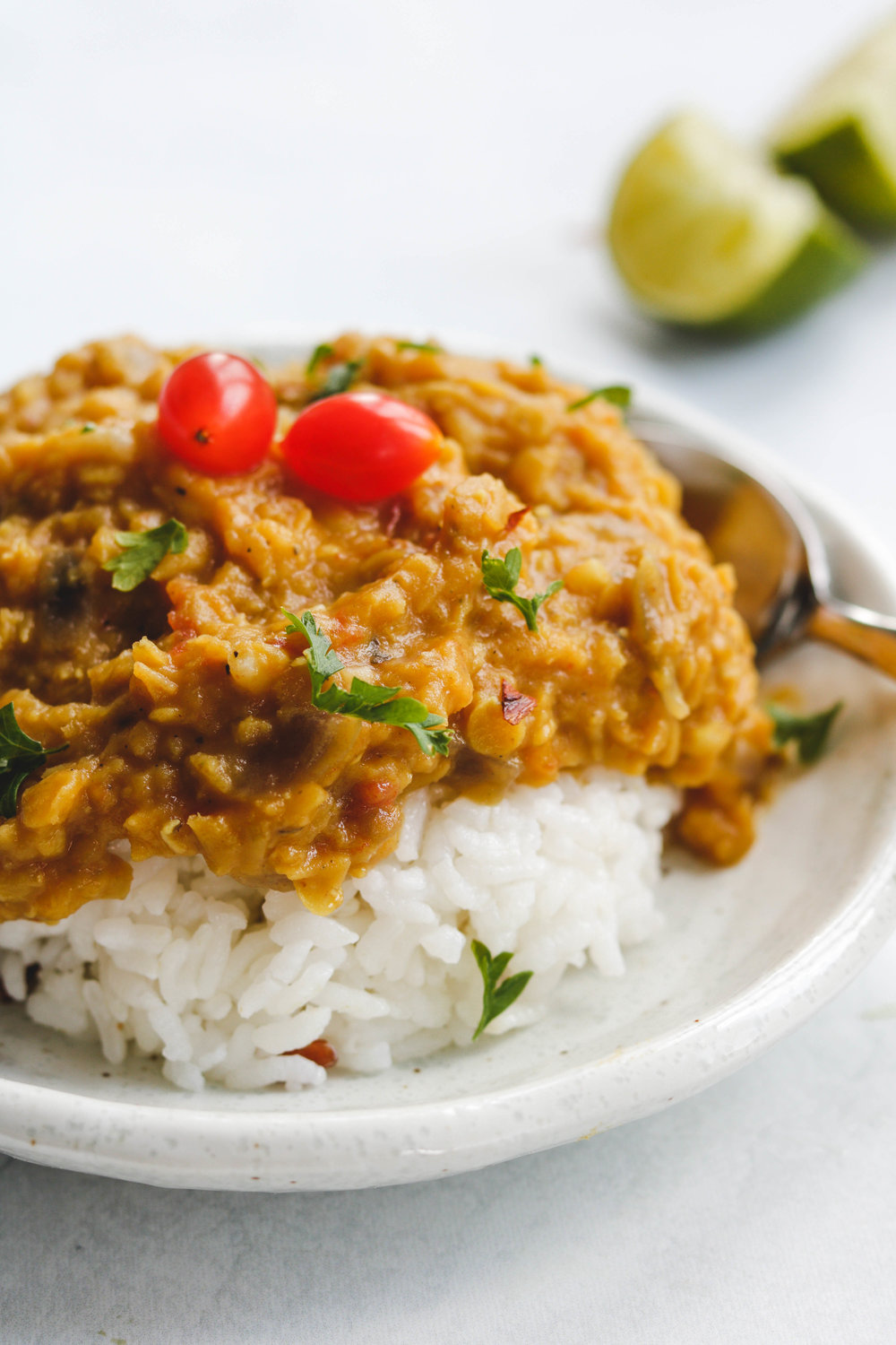 Vegan Red Lentil Curry Dal Side Close up (1 of 1).jpg