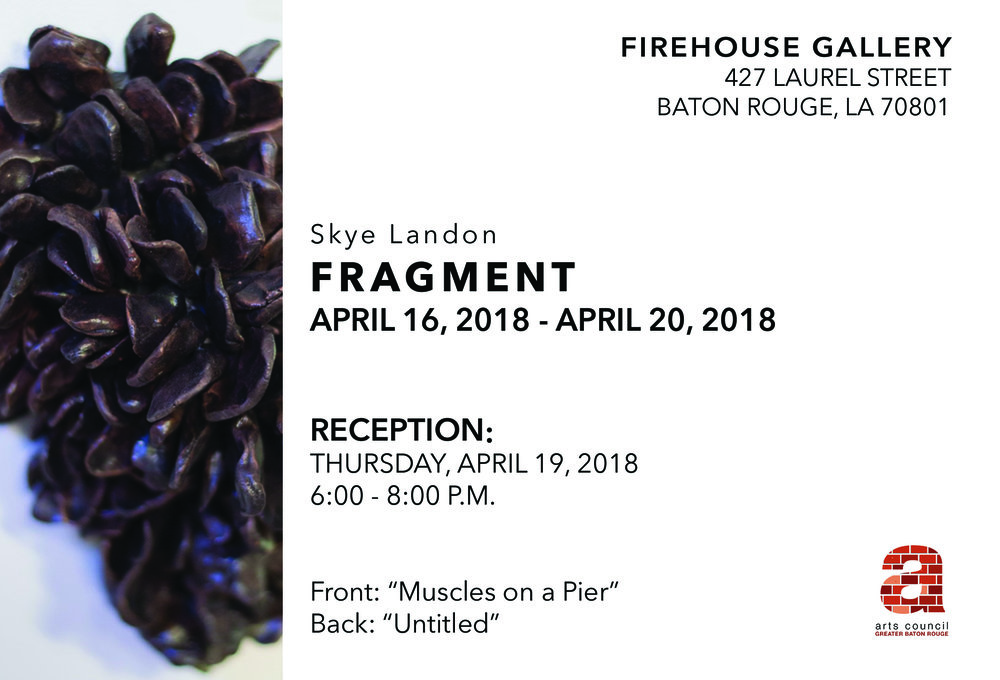 Artist Skye Landon takes over the Firehouse Gallery! The show will be up from April 16th through the 20th, and the artist will be present for a reception on Thursday the 19th from 6-8pm.