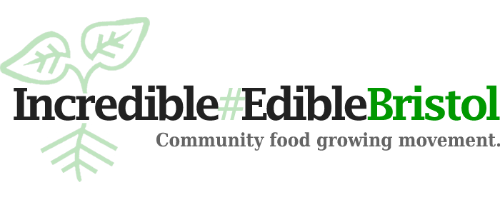 edible-logo-trans-new-temp500.png