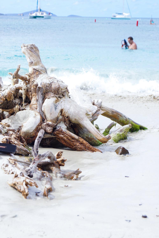 snorkeling beaches in st john in usvi virgin islands