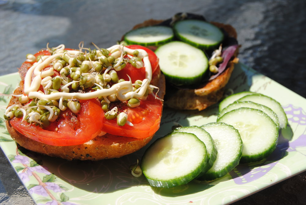 Mung Bean Vegan Burger