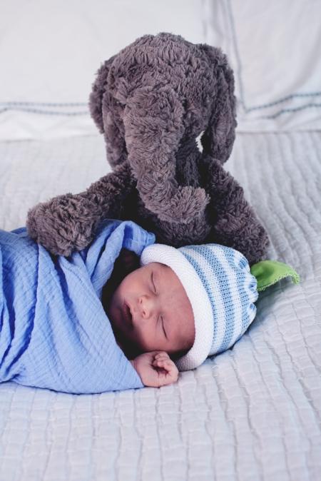 st. louis newborn baby boy with stuffed elephant