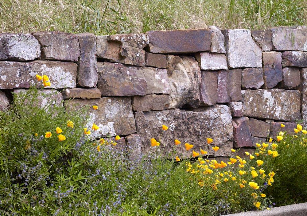 stone_flower.jpg