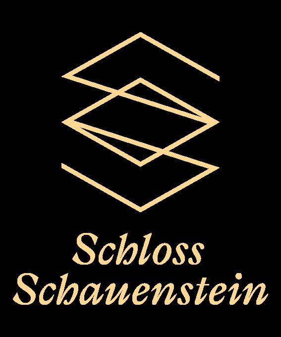 Logo SS transparent.png