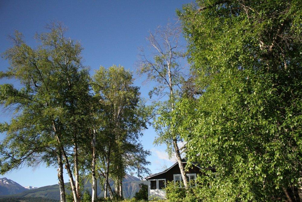 big cabin.jpg