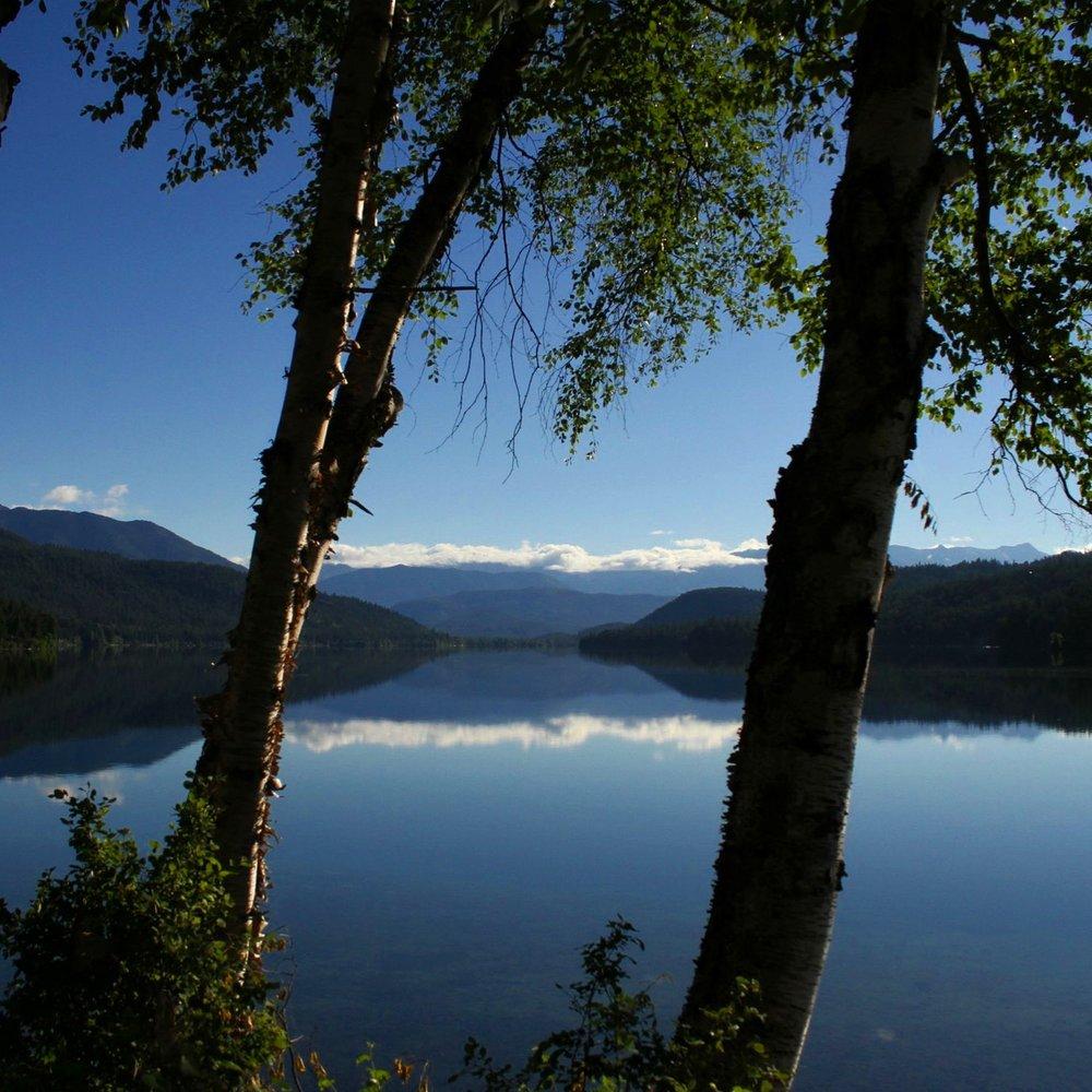 birch lake.jpg