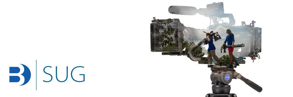 B_SUG BV10.jpg