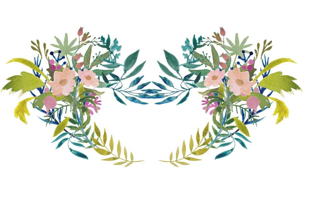 Botanical Pelvis 6b-2.jpg