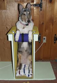 bailey-chair.jpg