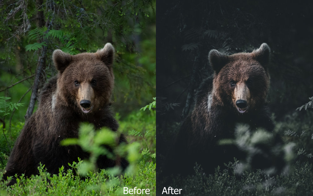 4-Before&After.jpg