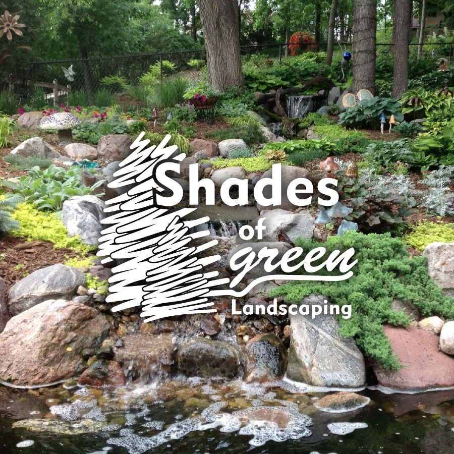 SHADES OF GREEN    Website Design    SEE THE WORK