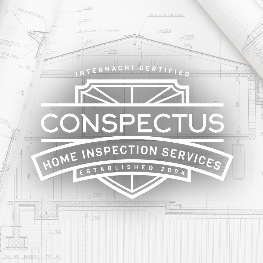 CONSPECTUS    Website Design & Local Search Engine Optimization    SEE THE WORK