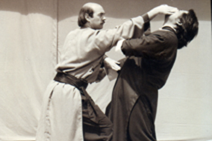 Sifu-Jerry-Alan-Johnson-1987-copy.jpg