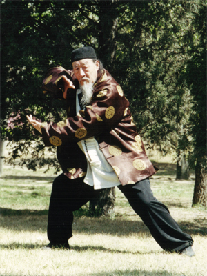 Master Duan Zhi Liang