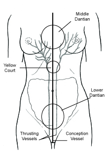 Figure 1.1. The Conception Vessel and Thrusting Vessels are the most important vessels in terms of diagnosing breast pathophysiology