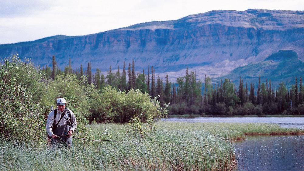 boreal-science-1.jpg
