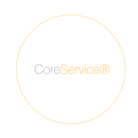 TS, Orange Icon, white, CoreService.png