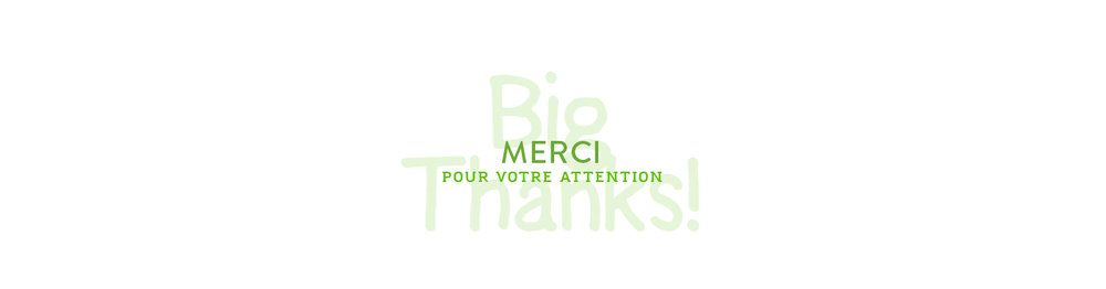 8-merci_pour_votre_attention_mandairon.jpg