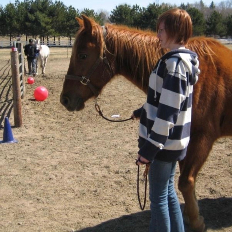 sorrel-horse-red-hair-teenager.jpg