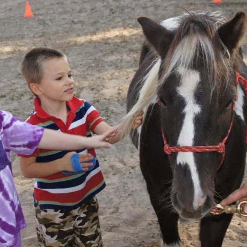 boy-grooming-pony.jpg