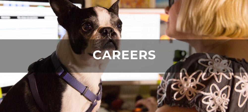 MO_SiteAssets_Careers_1672x754.jpg