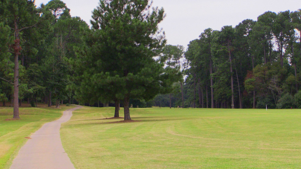 1ST HL CART PATH ON LEFT - EDITED.jpg