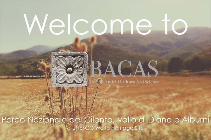 Welcome to BACAS
