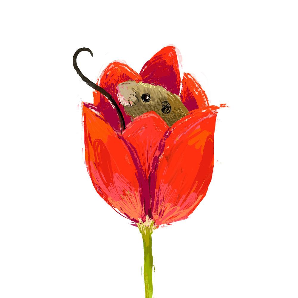 mouse-tulip.jpg