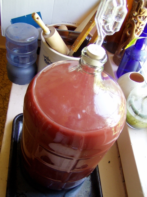 Sitting pretty -- homemade cherry wine