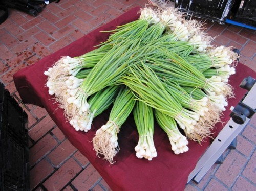 Young onions perfect for the grill.