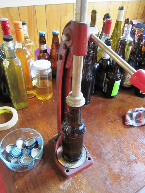 Hard cider bottling of the Newton pippin cider that I pressed with Nat West last winter. Really good this year -- much better than last's. The dandelion wine is bottled on the left...