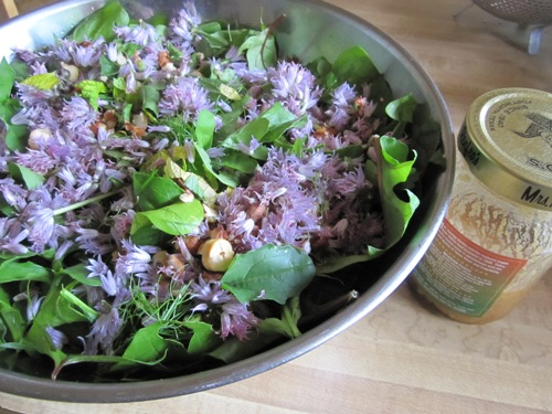 Everything in this arugula, ribboned fresh herbs (including oregano, mint, lemon balm, fennel, chives) and chive blossom salad was from the front yard except the toasted hazelnuts. Dressed it with a Jorinji Miso, lemon vinaigrette. Look forward to this every year.