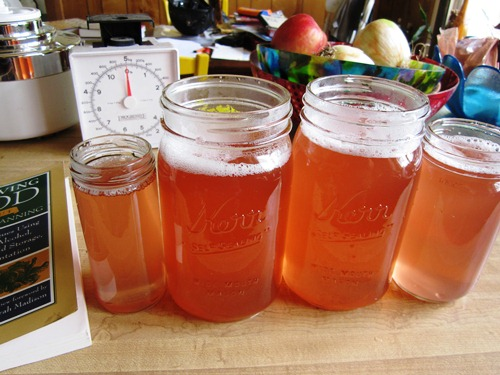 Rhubarb syrup! So far we've just had it with seltzer but rhubarb margaritas are in our near future...