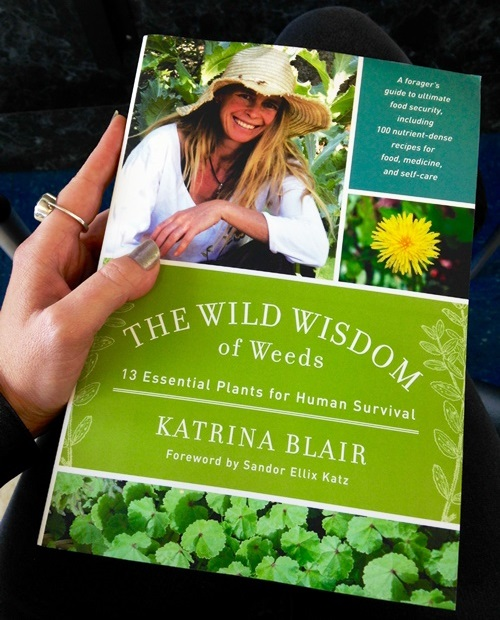 I'm really looking forward to the years to come with this book. Great wild edible reference by Katrina Blair with an intro. by my friend and food hero Sandor Ellix Katz.