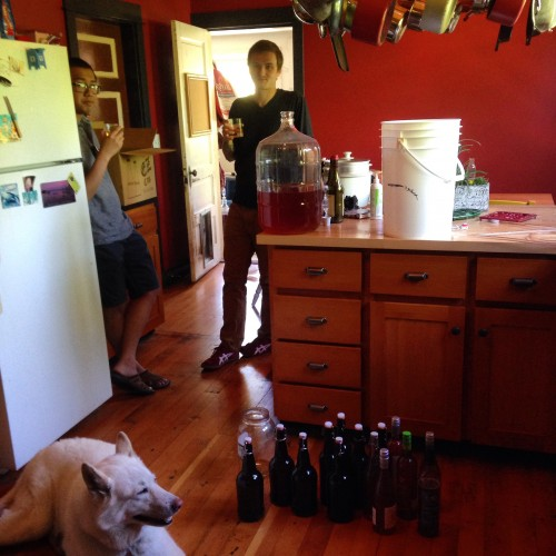Plum wine bottling and drinking with my housey and friend. And the White Wolf. Only 25 more gallons to go!