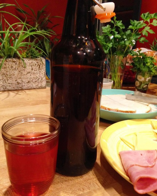 I've been making homemade fruit wines for years but 2015 was the first year I made Concord grape wine and it turns out it's pretty dang tasty. Not as good as the plum wine but yummy.