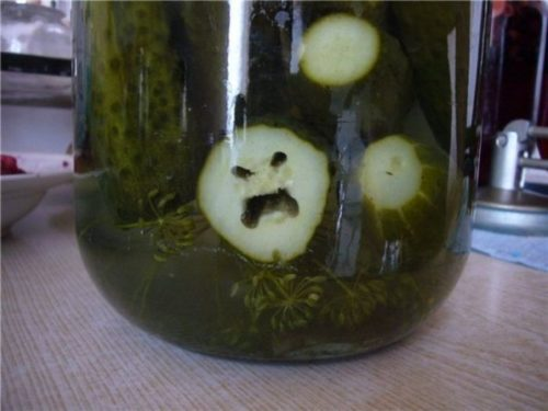 "Portland Fermentation Festival attendee 2016, ""I can't get the sound of the wailing, howling pickles out of my head! Never again. Those poor pickles."""
