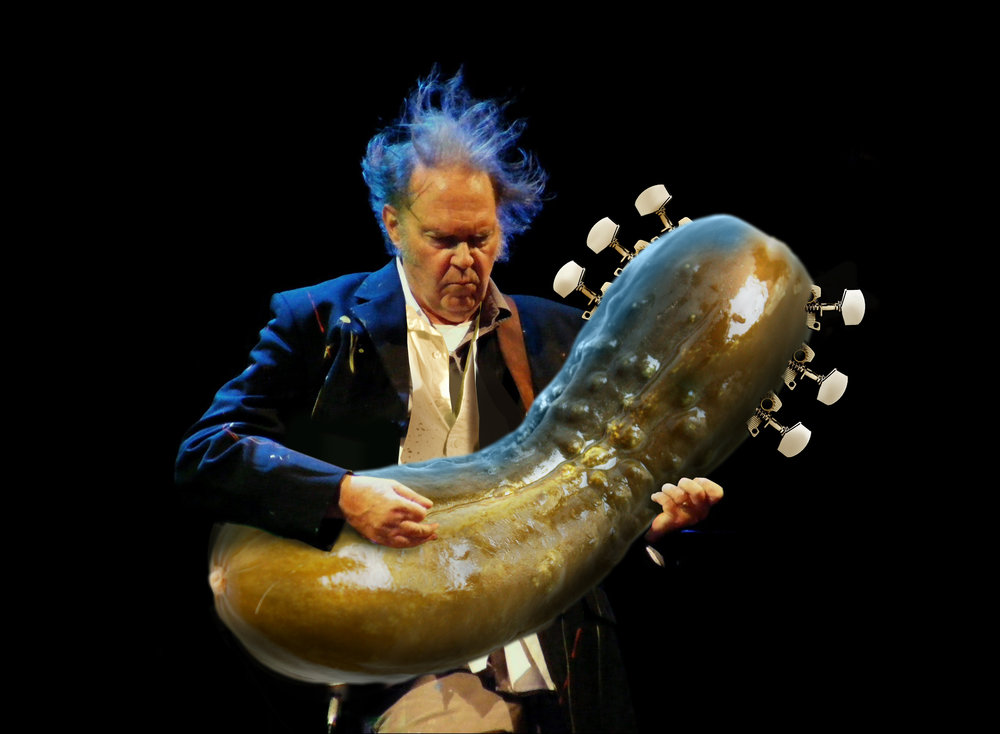 Neil_Young_Pickle copy.jpg