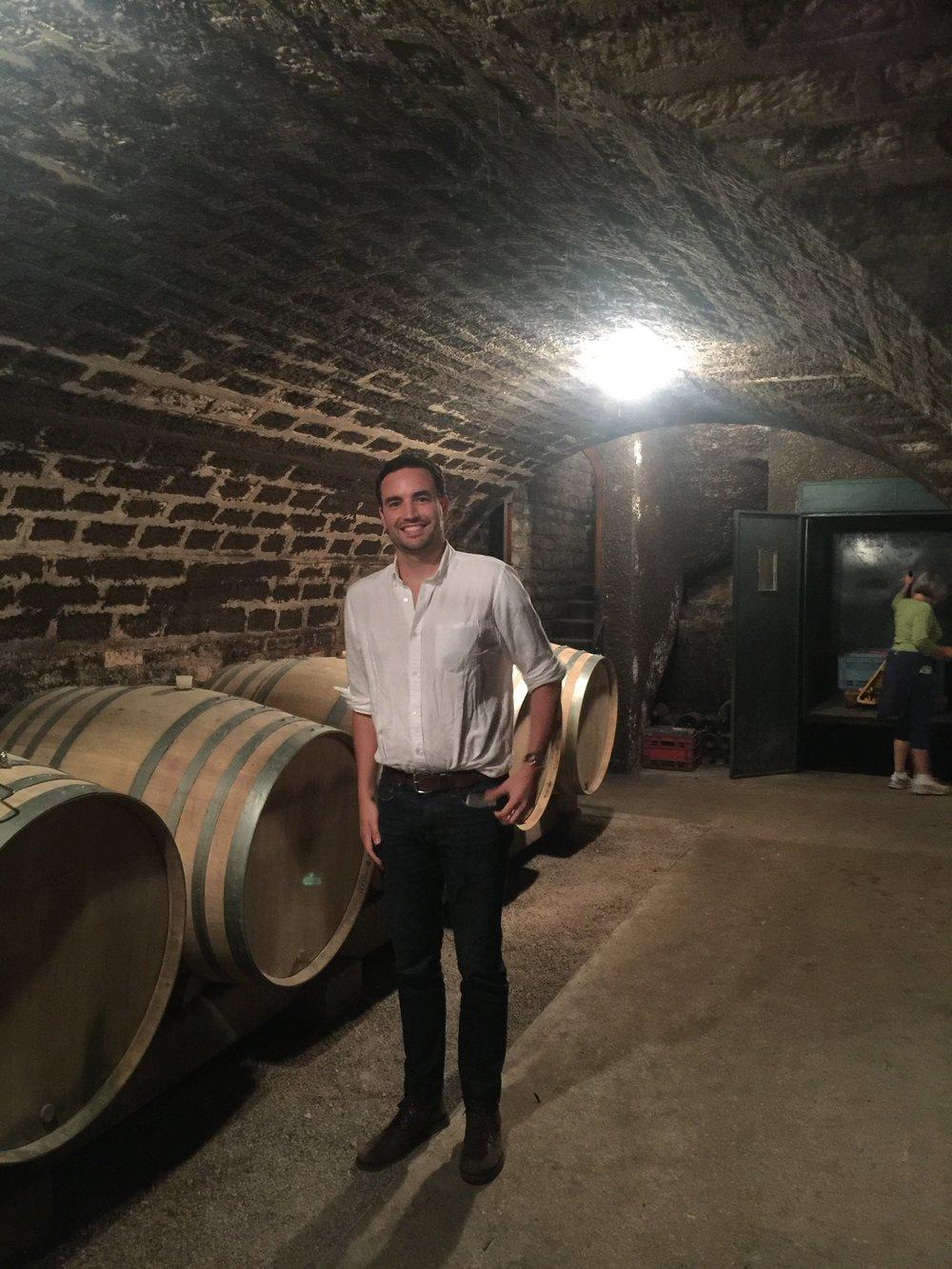 EXPLORING european family wine cellars