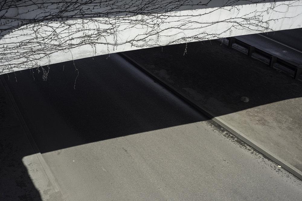 http://www.kptv.com/story/22550774/cold-case-portland-man-to-death-shot-while-driving-home    https://www.portlandoregon.gov/police/article/485844