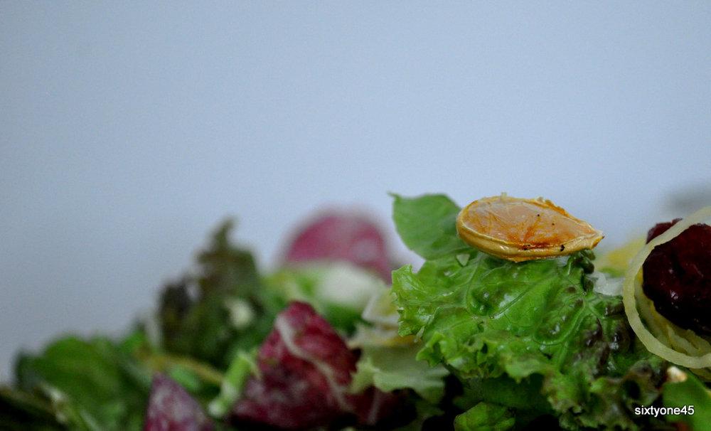Thanksgiving Salad by sixtyone45.com (4)
