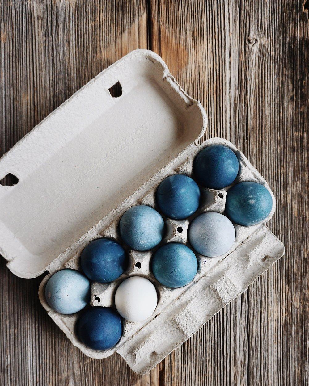 Lieldienu olas viszilākās - oliņ boliņ, šogad mans olu eksperiments ar zilo, gaiši zilo, tumši zilo, zilo un viszilāko.aši izstāstīšu kas un kā, bet tikmēr fonā aicinu atskaņot burvīgo Viktora Lapčenoka vokālu -https://ej.uz/akviktor